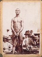 Mulatto Slaves http://www.inetmgrs.com/onepeoples/black%20nationalism.htm